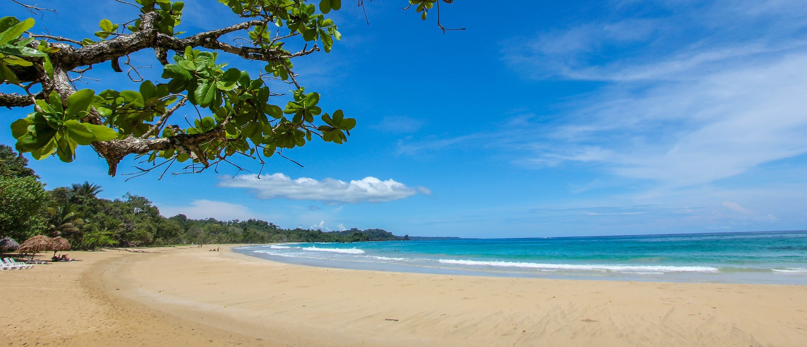 Red Frog Beach Island Resort Certified For Its: Panama Beachfront Lots For Sale In Bocas Del Toro