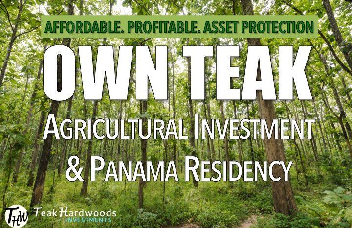 Panama teak investment